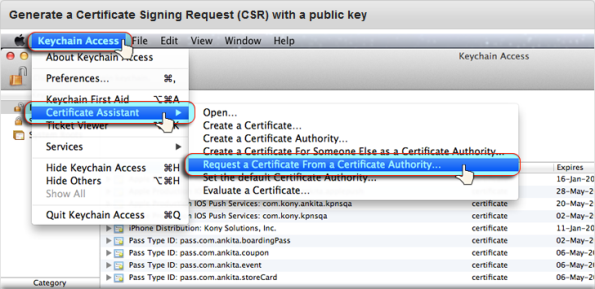 Renew the Apple Push Notification Service (APNS) Certificate
