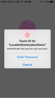 Local Authentication API